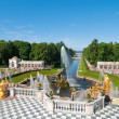 Lower park of the Peterhof — Stock Photo #4435331