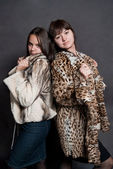 Two sexy girls in fur coat — Stock Photo