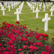 Americcemetery in OmahBeach, Normandy — Stock Photo #4217813