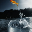Goldfish jumping out of the water — Stock Photo #4220911