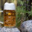 Having beer in the forest — Stock Photo