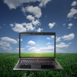 Laptop on green grass on a sunny day — 图库照片