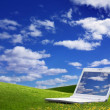 Green Field and a laptop — Stock Photo