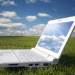 White laptop in nature — Stock Photo