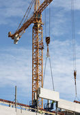 Construction cranes in action — Stock Photo