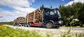 Log truck — Stock Photo