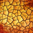 Dry earth - Stock Photo