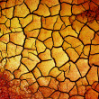 Dry earth — Stock Photo #4230525