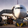 Boeing being loaded with cargo — Stock Photo