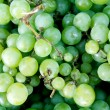 Wine grapes — Stock Photo #4231310