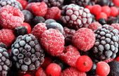 Mixed berries — Stock Photo