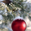 Baubles — Stockfoto #4255594