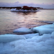 Foto de Stock  : Ice floe