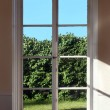 Window — Stock Photo #4255751