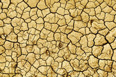 Image of dry earth — Stock Photo