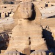 Foto Stock: Sphinx - Giza, Egypt