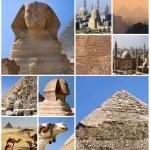 EGYPT COLLAGE — Stock Photo