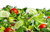 Salad on white background — Stock Photo