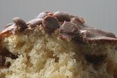Muffin Macro — Stock Photo