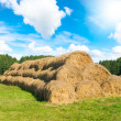 Wheat Haystacks — Foto de Stock