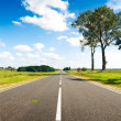 Asphalt road in green meadow — Stock Photo