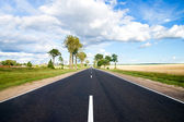 Asphalt road in green meadow — Stock Photo
