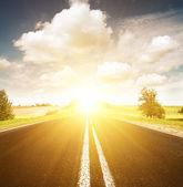 Asphalt road in green sunset meadow — Stock Photo