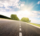 Asphalt road in green sunset meadow — Stock Photo
