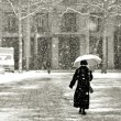 Walking in the snow — Stock Photo
