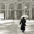 Walking in the snow — Stock Photo #4174398