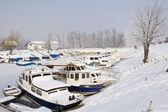 Old boats in frozen marina — Stock Photo