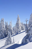 Snow covered ski slope — Stock Photo