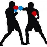Boxers — Stock Vector #4273421