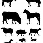 Farm animals — Stock Vector #4904497