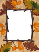 Rusty leaves frame — ストック写真