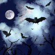 Bats flying in the dark sky — Stock Photo