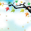 Autumn leaves on the branch - Stock Photo