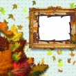 Stock Photo: Autumn leaves with frame