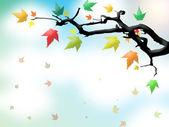 Осенние листья на ветке — Стоковое фото