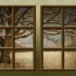 A winter view through a wood rustic window — Stock Photo #4464977