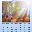September month 2011 calendar — Stock Photo