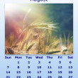 Stock Photo: August month 2011 calendar