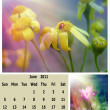 Stock Photo: June month 2011 calendar