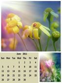 June month 2011 calendar — Stock Photo