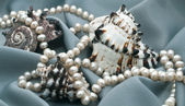 Three cockleshells and beads from natural sea pearls — Stock Photo