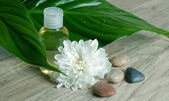 Essential oil with flower and stones. — Stock Photo