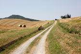 Campos de emilia-romaña — Foto de Stock