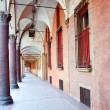 图库照片: Sidewalk from Bologna