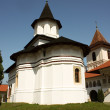 Stock Photo: Brancoveanu monastery