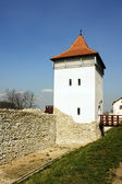 Fortress wall — Stock Photo